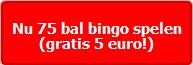 Nu 75 bal bingo spelen