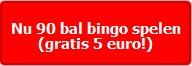 Nu 90 bal bingo spelen
