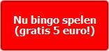 Nu Bingo Spelen