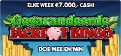 Gegarandeerde Bingo Jackpot
